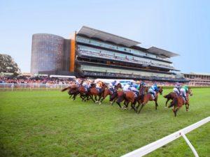 randwick racecourse